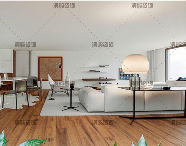 葡萄牙波尔图全新联排别墅2层4房 66万欧