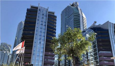 伊斯坦布尔房产:Maslak1453大厦