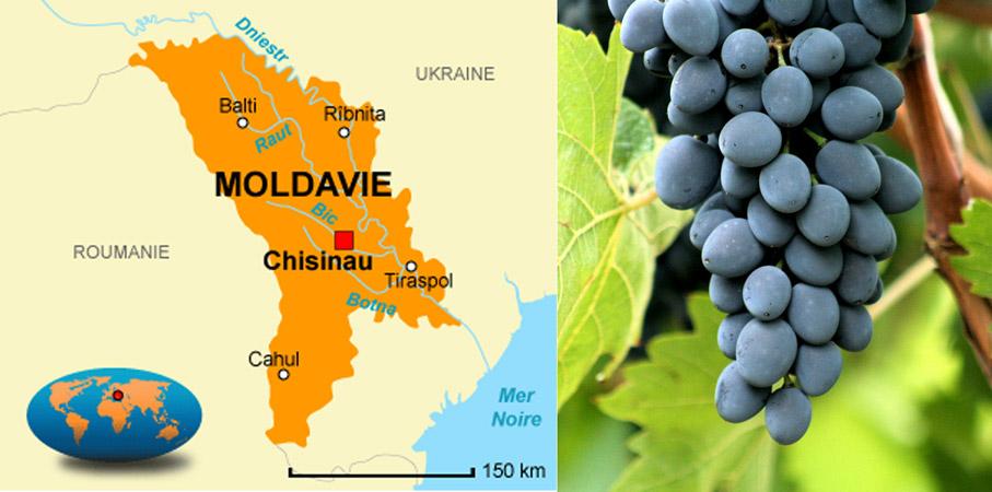 摩尔多瓦葡萄酒