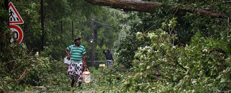 多米尼克飓风2017