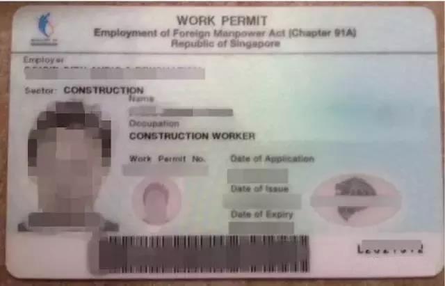 新加坡WP准证