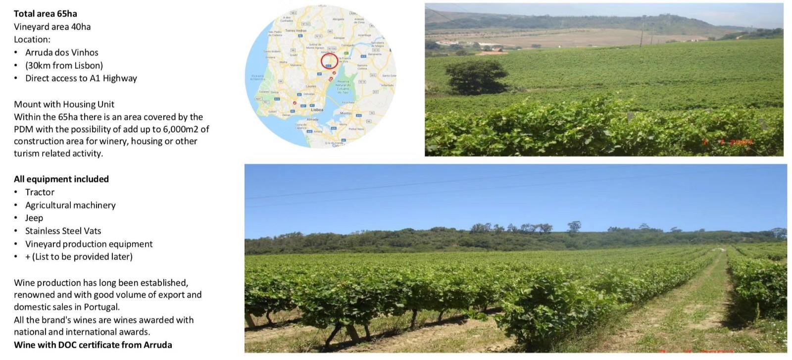 葡萄牙房产:葡萄酒庄园出售