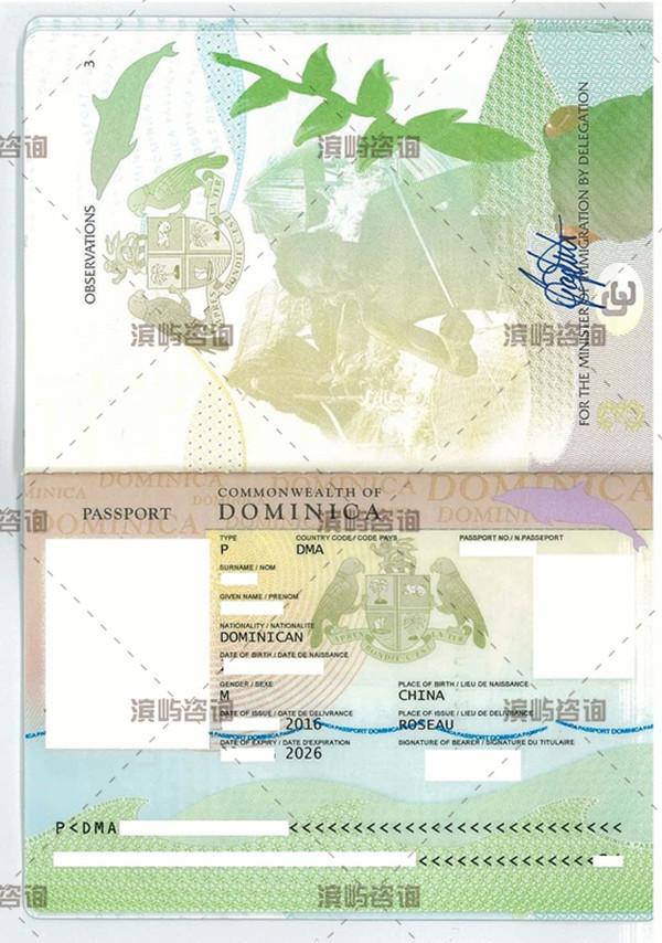 多米尼克护照成功案例:避税,离岸架构及出入方便