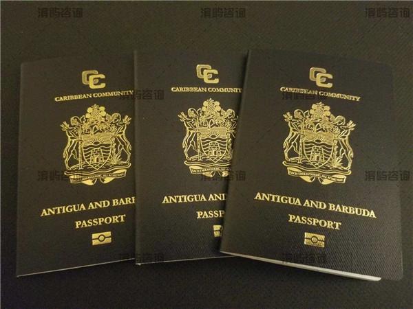安提瓜护照成功案例:一家四口捐赠10万美元!
