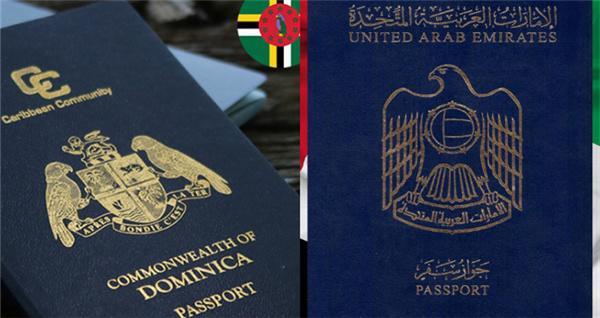 多米尼克护照成功案例:单人捐赠入籍