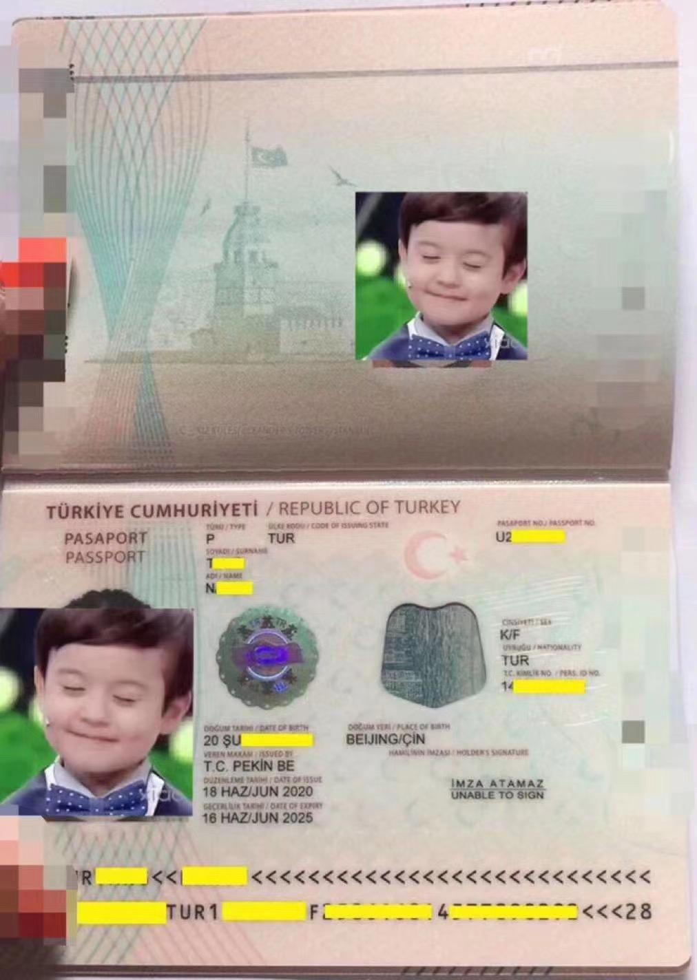 2020土耳其护照最新成功案例