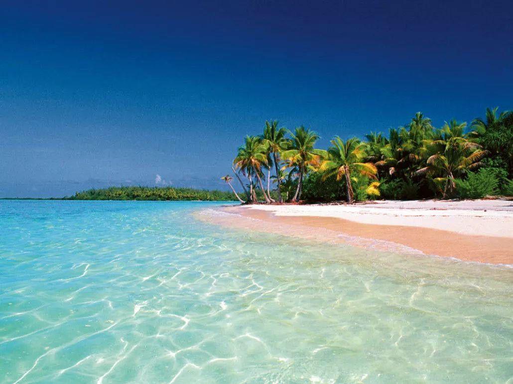 瓦努阿图移民如何申请 办理需要多长时间拿到护照