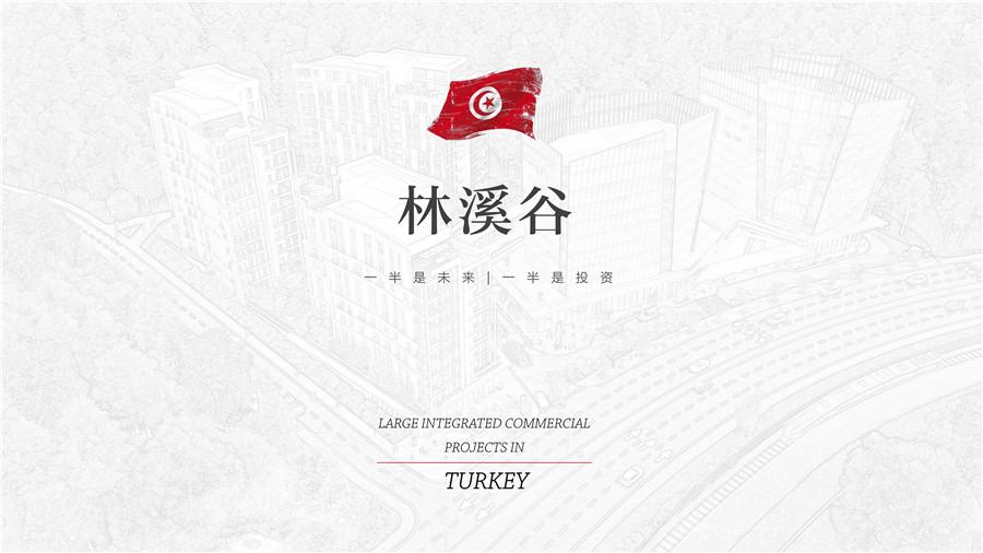土耳其房产:伊斯坦布尔林溪谷