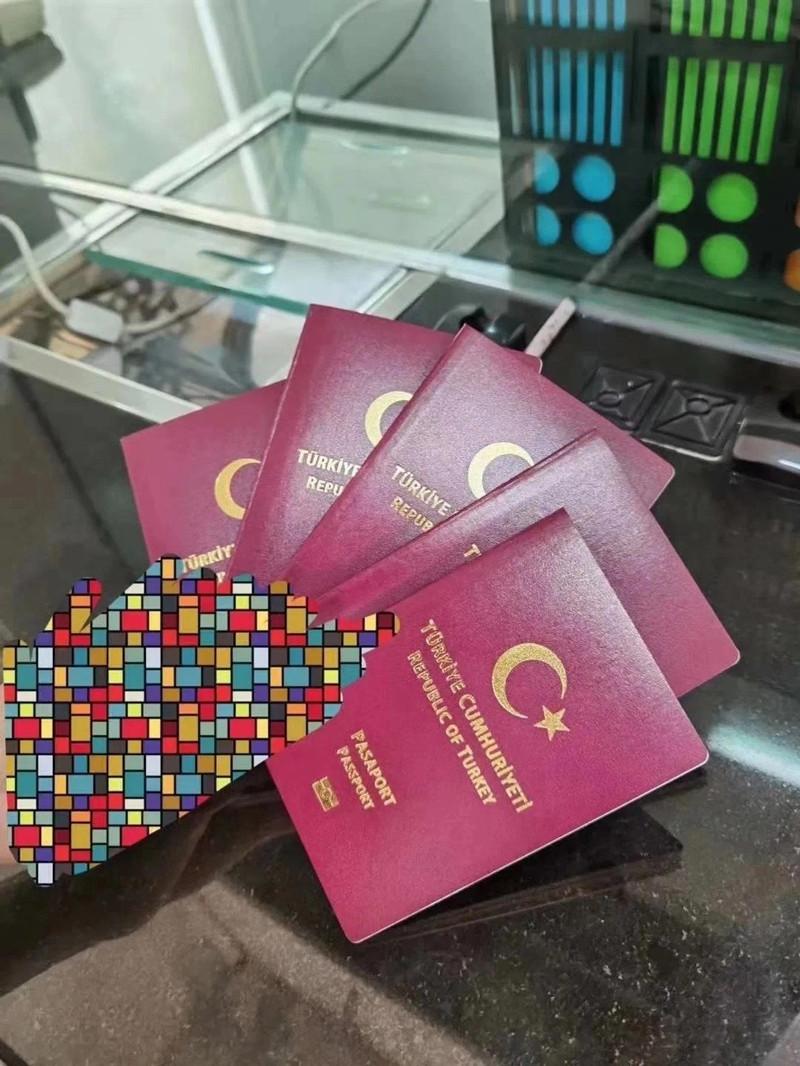 2020.09土耳其护照成功案例